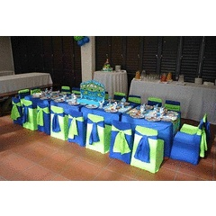 Start Your own Kiddies Party Business! for R6,500.00