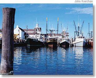 Montauk fishing boats that hampton feelin 39 pinterest for Montauk fishing party boats