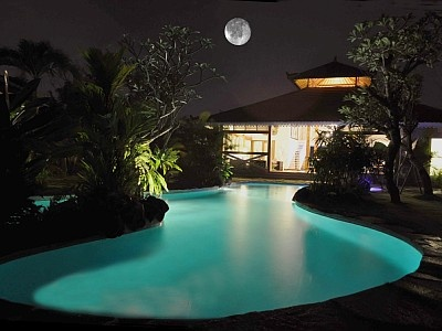 Swimming Pool Ideas 214 best swimming pool ideas images on pinterest   small pools