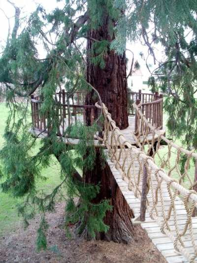 Swinging Bridge: Backyard Treehouse Fort, Treehouses Uk, Backyard Trees, Life Treehouses, Rope Bridges, 14 15 Bridges
