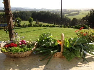 The weather is getting warmer - so is the soil - today's goodies out fo the garden for the Greenswap