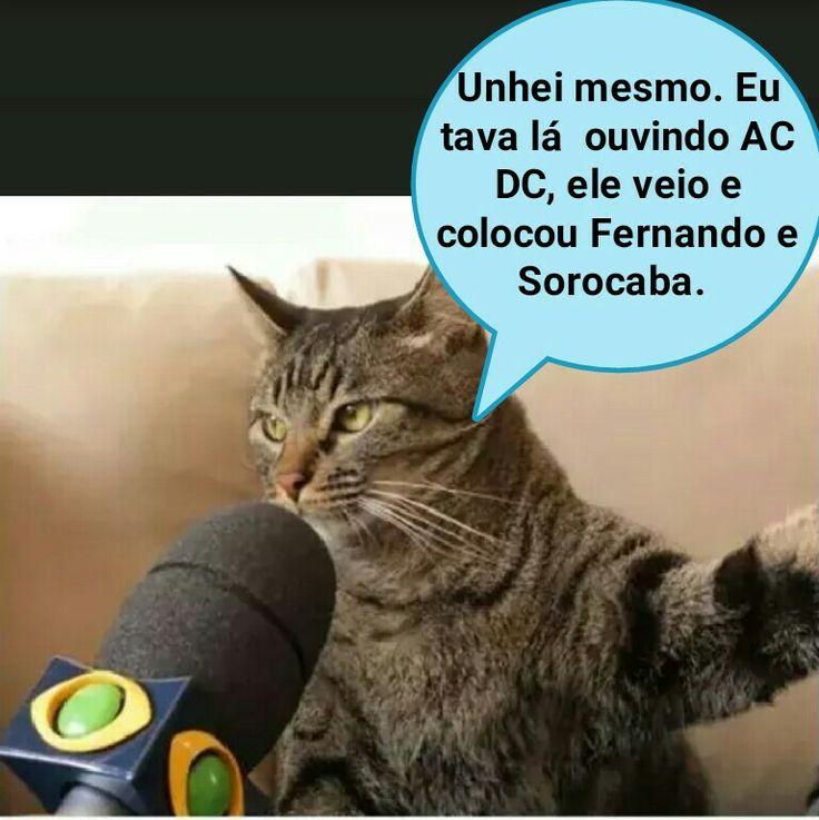 Image result for Sorocaba funny