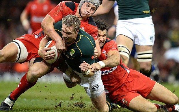 TV//LIVE Springboks vs Wales Rugby Online streaming in Cardiff 2016 November 26