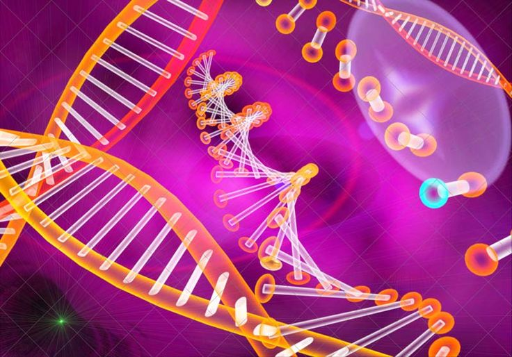 Unraveling the Human Genome: 6 Major Milestones | LiveScience (Image: Giovanni Cancemi, Shutterstock)