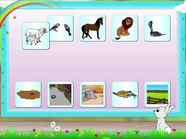 English Grammar - Animal and their homes