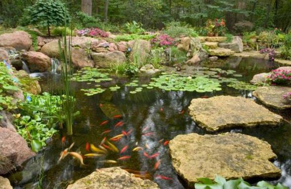 33 best images about pond on pinterest farm pond garden for Natural fish pond