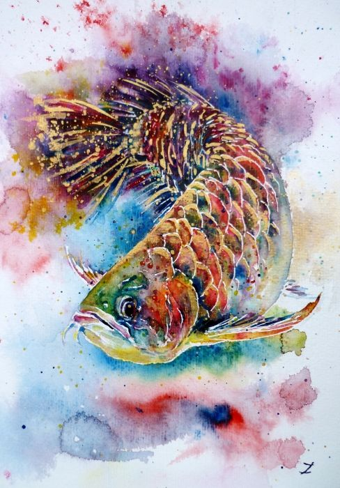 "Watercolor of a ""golden dragon fish"" - stunning!"