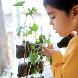 Hanging Garden Seed Starter | Garden Crafts | FamilyFun - uses trading
