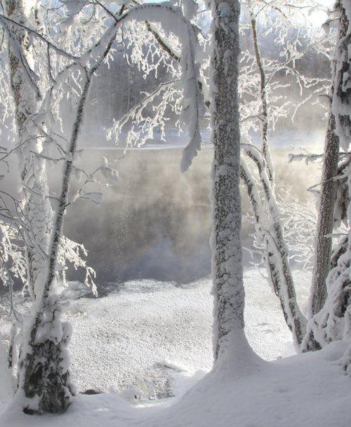 bluepueblo:    Winter Lake, Finland  photo via nikowade