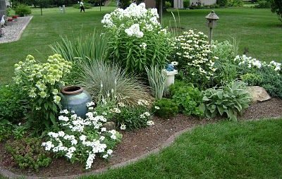 """Love the """"Coconut Lime Echinacea"""" at back left. Great color on the ceramic container as well."""