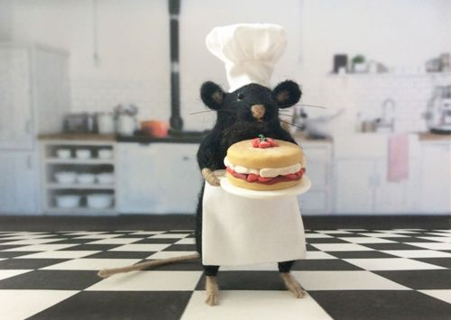 Apparently not all mice scavenge for crumbs on the kitchen floor. Some fulfil their life-long dream of opening a Patisserie on the classy side of town. Like this young chap. Once mocked for his sweet tooth and love of musicals, he now runs a successful business selling bespoke cakes to the mouse elite.