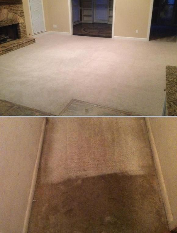 Are you in need of local carpet cleaners? This business is the one to hire. They have been providing chem dry carpet cleaning services for 4 years.