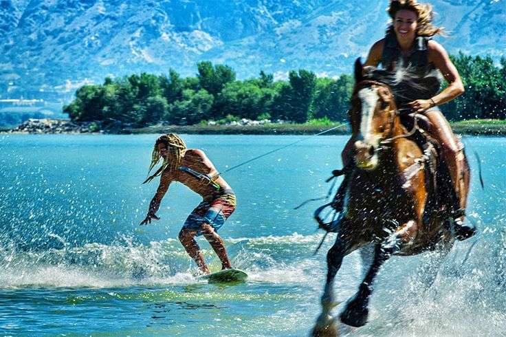 Серфинг и лошадь https://mensby.com/video/entertainment/7451-surfing-horse  Скользить по водной глади на доске для серфинга используя для этого быструю лошадь? Почему нет? Серфингист увлекаемый лошадью на мелководье за собой.
