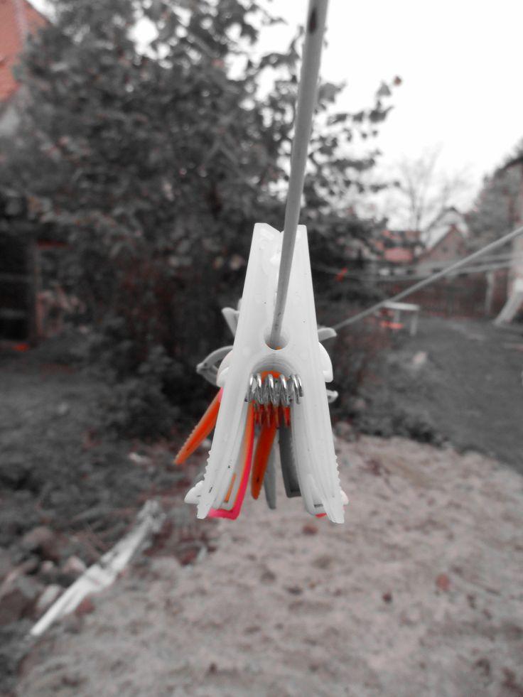 clothespins in autumn