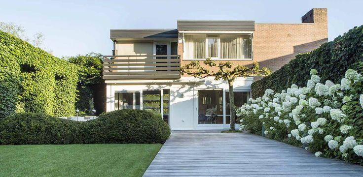 Modern huis met Hydrangea-hortensia