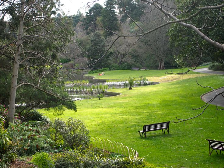 Royal Botanic Gardens where Frank and Stella Boreham visited most Thursday afternoons to read and muse.
