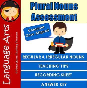 PLURAL NOUNS ASSESSMENT/Regular & Irregular Plural Nouns/ CCSS Aligned