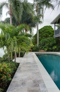 Silver Travertine Pavers - Tropical - Pool