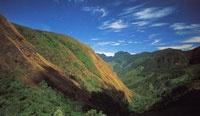 Durante los últimos 50 años la serranía ha estado sometida a un fuerte proceso de colonización y, por lo tanto, a una transformación importante de sus condiciones originales.