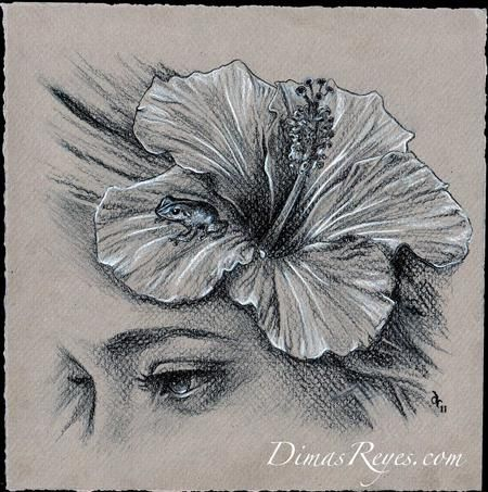17 best images about hibiscus flower tattoos on pinterest for Sacred art tattoo corvallis