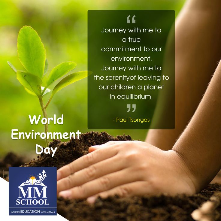 """Journey with me to a true commitment to our environment. Journey with me to the serenity of leaving to our children a planet in equilibrium"". ~ Paul Tsongas #WorldEnvironmentDay #Environment #GoGreen #ConnectingPeopleWithNature #ConnectWithNature #Nature #SaveTrees #SavePlanet #World #Earth"
