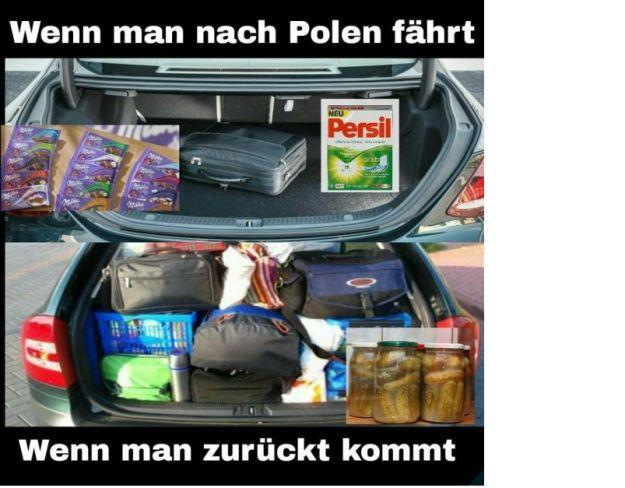 Fakt ist: In Polen findest Du in jedem Raum eine Fliegenklatsche.