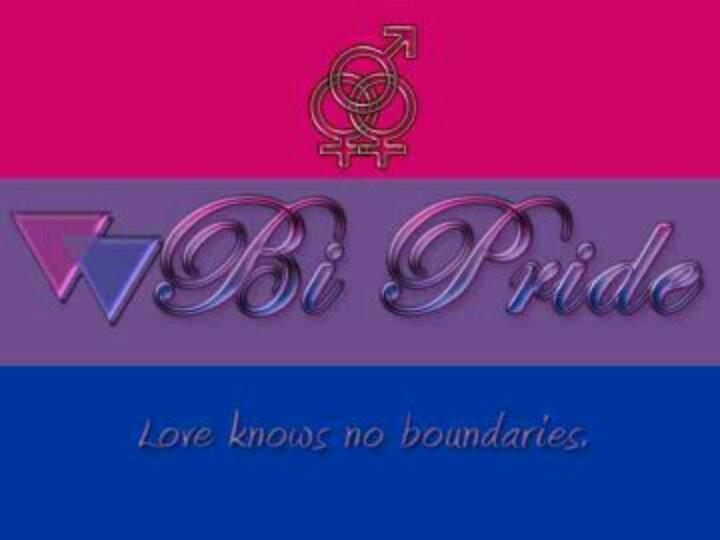 85 Best Bi Sexual Pride Images On Pinterest Bisexual Pride Pride And Wings