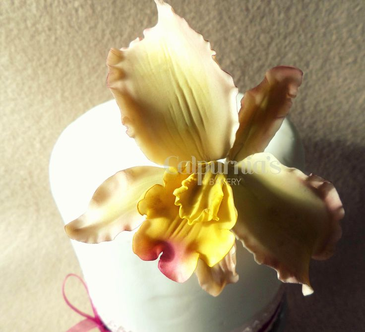 Orchid #sugarpaste