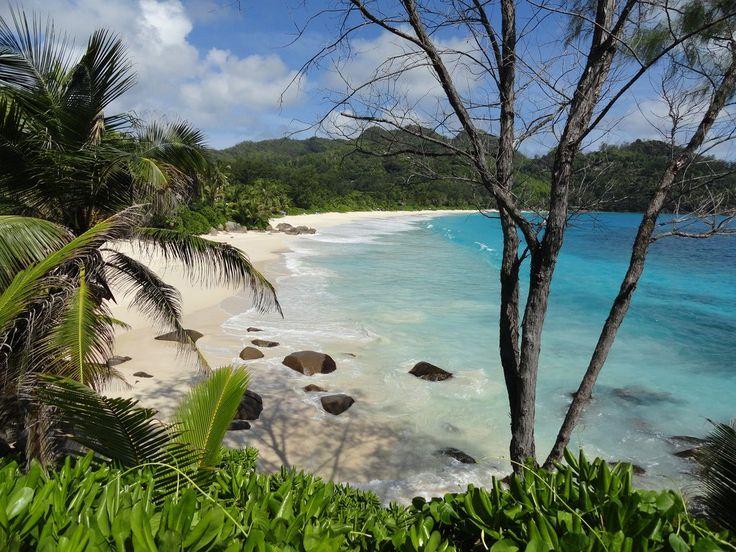 SEYCHELLES.Mahè.BLISS HOTEL. Agosto 14 giorni 12 notti dal 4 Agosto al 17 Agosto Pern. e prima colazione 2190 euro. http://www.cocoontravel.uk #Seychelles #viaggi #journey