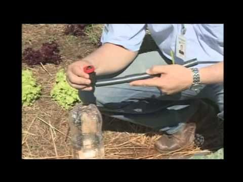Sistema Pinga-Pinga de irrigação com acionador automático de baixo custo Sr. Augusto - YouTube