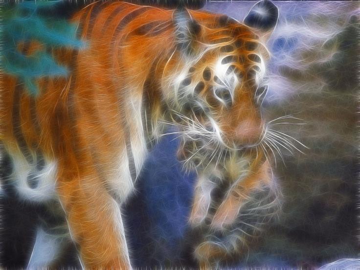 59 best fractal cats images on pinterest - Neon animals wallpaper ...