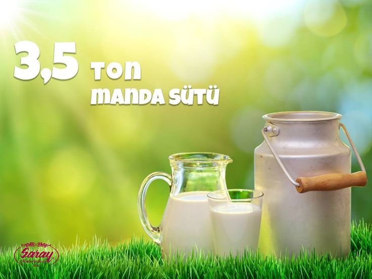 Lezzetimizin ardındaki tatlı sır; yulaf otu, pamuk çekirdeği ve yonca ile beslenen mandalardan elde ettiğimiz, 3.5 ton günlük süt!