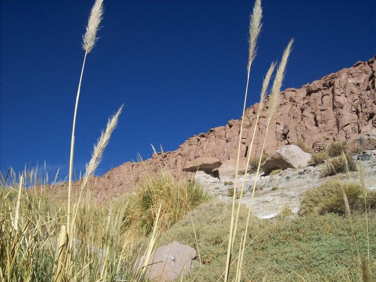 San Pedro de Atacama. Lovely