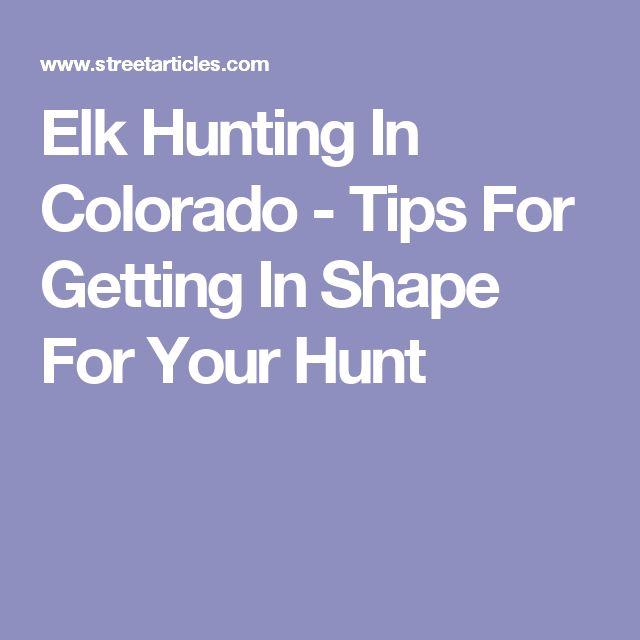 Elk Hunting In Colorado - Tips For Getting In Shape For Your Hunt