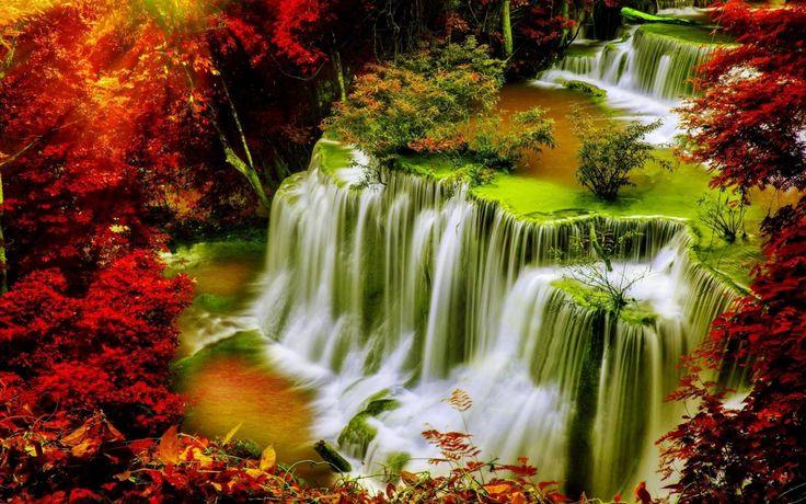 Download Wallpaper ID 2199974 - Desktop Nexus Nature