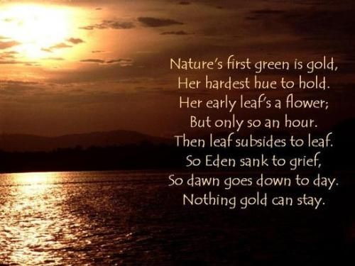 naturalism in robert frost poems First principles, intercollegiate  robert frost probably first became aware of  how to reconcile the materialism in darwin's naturalism with the strongly.