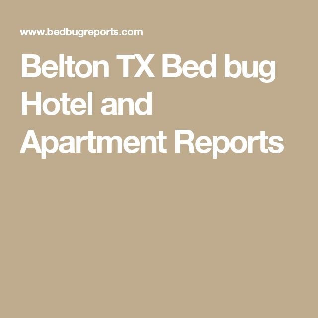 Belton Tx Bed Bug Hotel And Apartment Reports Bedbugs Pinterest Bugs Hotels Apartments