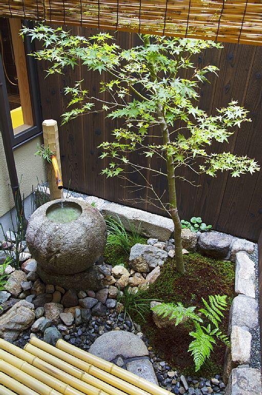 Kyoto townhome rental - Tsuboniwa (townhouse garden) with Japanese maple tree and water feature (Photo by Kodai Masuda)