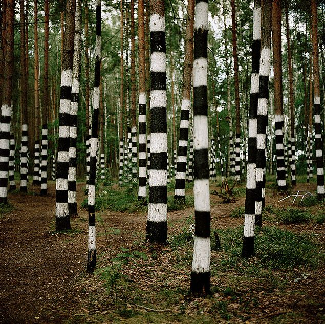 Garden Design By Carolyn Mullet 349 best land art images on pinterest | land art, environmental
