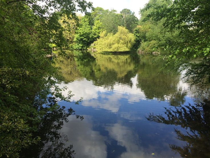 Reflections in the lake at St Stephen's Green, Dublin