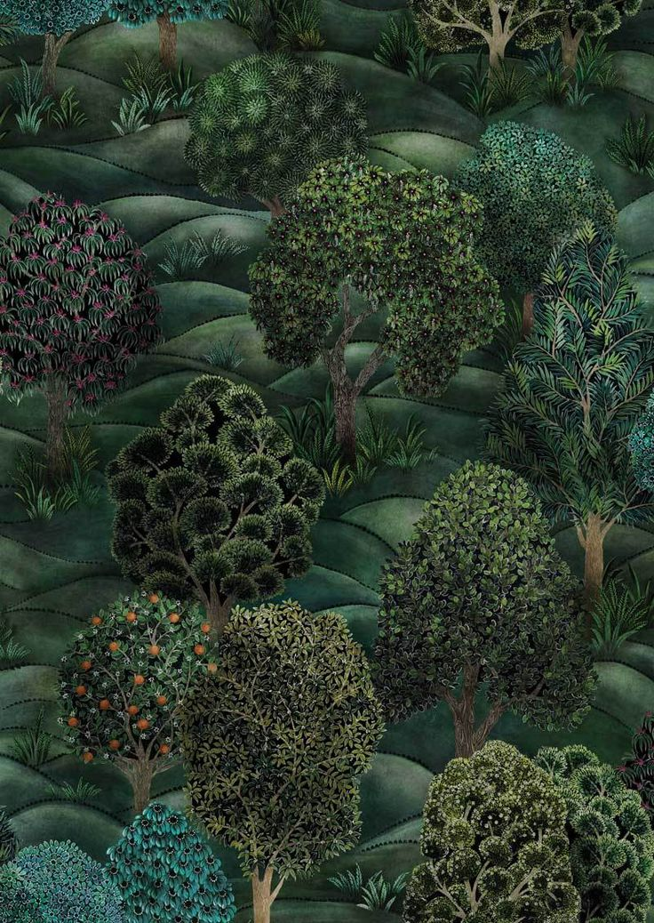 Forest Wallpaper Botanical Botanica Collection Cole