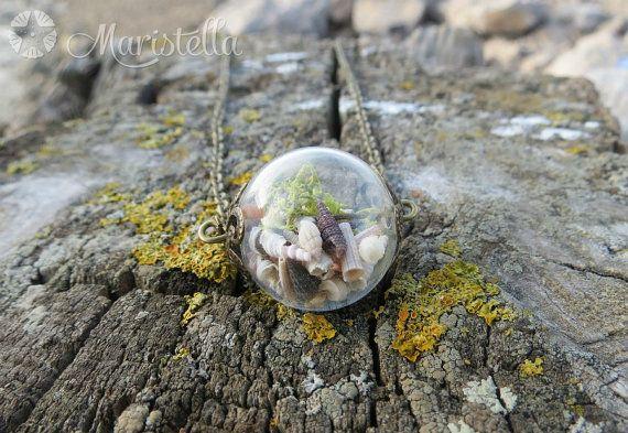 Collana del globo di vetro rotondo, collana terrario vero muschio, collana vero muschio, ciondolo terrario, gioielli di muschio naturale, conchiglie reale.