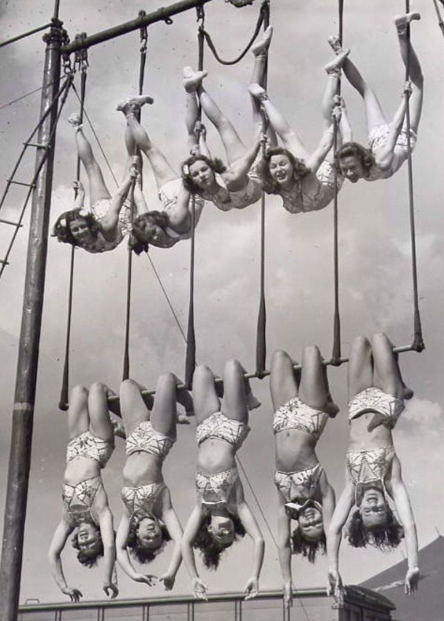 High Flyers Trapezes