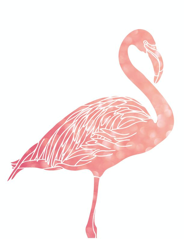 2 Free 8x10 Flamingo Printables!