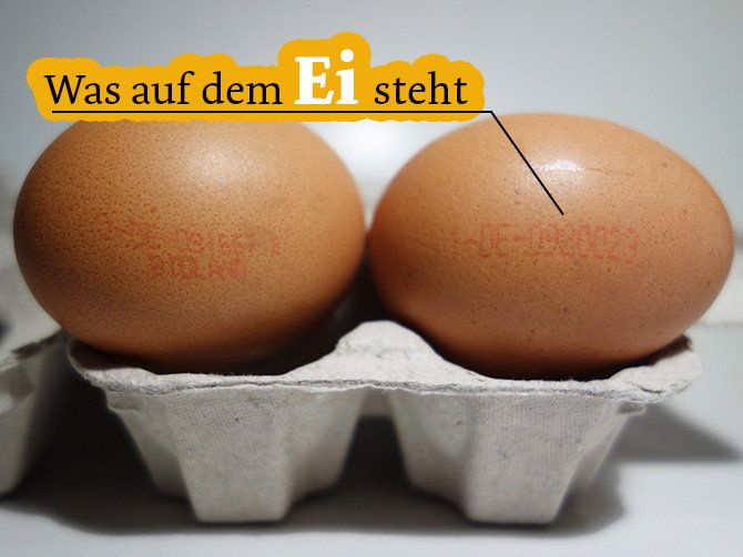 Was auf dem Ei steht: der Eier-Code