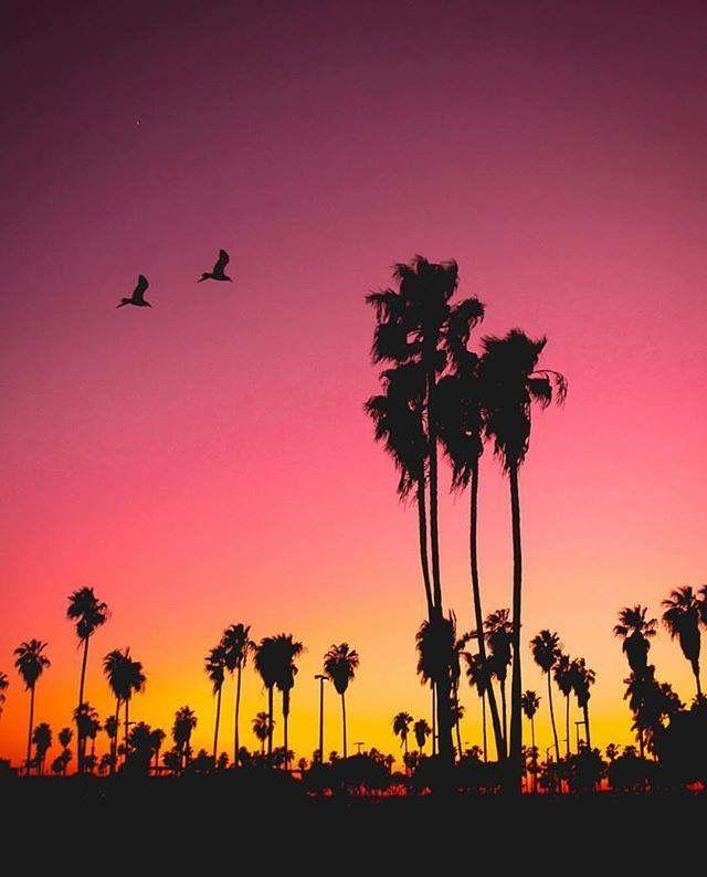 117 besten Hometown-San Diego, CA Bilder auf Pinterest   San diego ...
