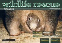 Issue 4 - The-Wombat-Wildlife. http://wildliferescuemagazine.com/issue-four.html