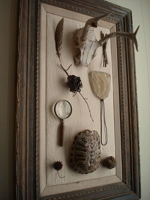 curiosities display  ~☆~ I display wonderful things like these~☆~