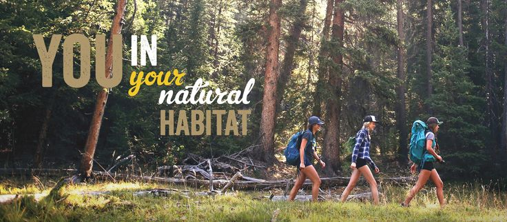 Sun Valley Idaho | Vacation Planner for Sun Valley and Ketchum