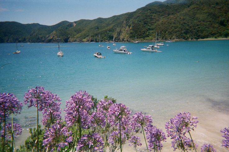 Oke Bay, Bay of Islands
